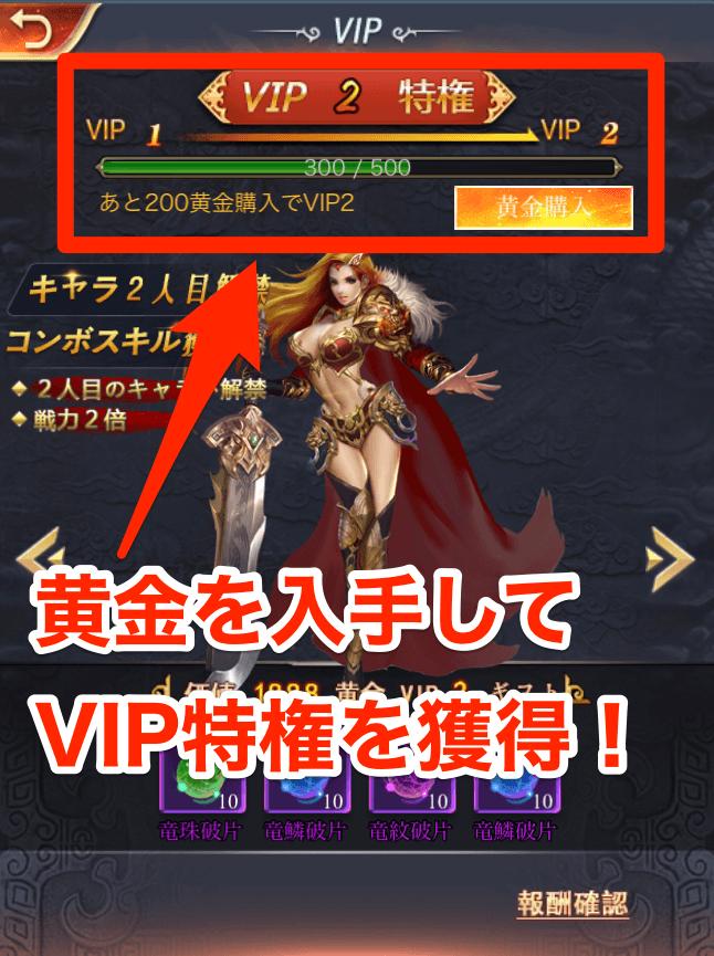 VIP特権(課金)の画像